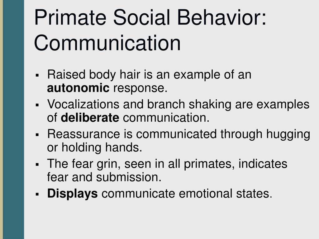 Primate Social Behavior: Communication