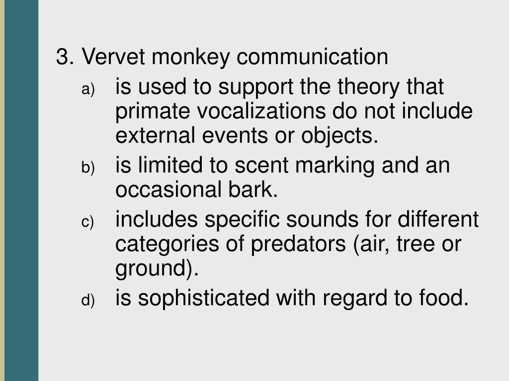 3. Vervet monkey communication