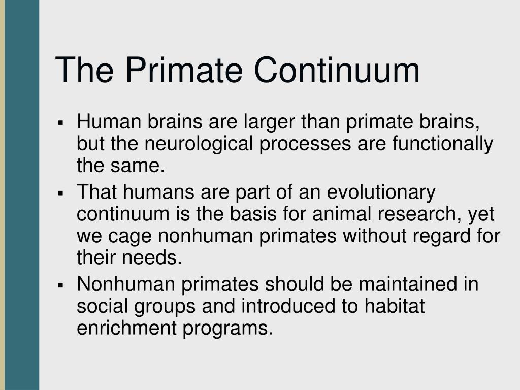 The Primate Continuum
