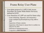 frame relay user plane