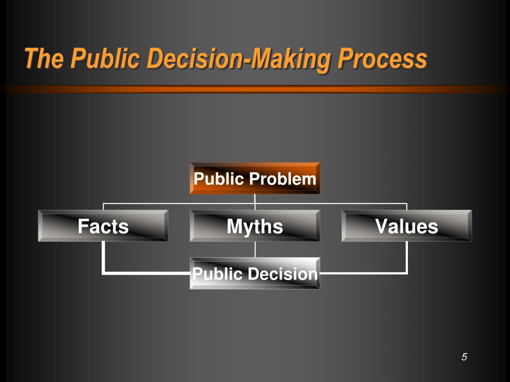 The Public Decision-Making Process
