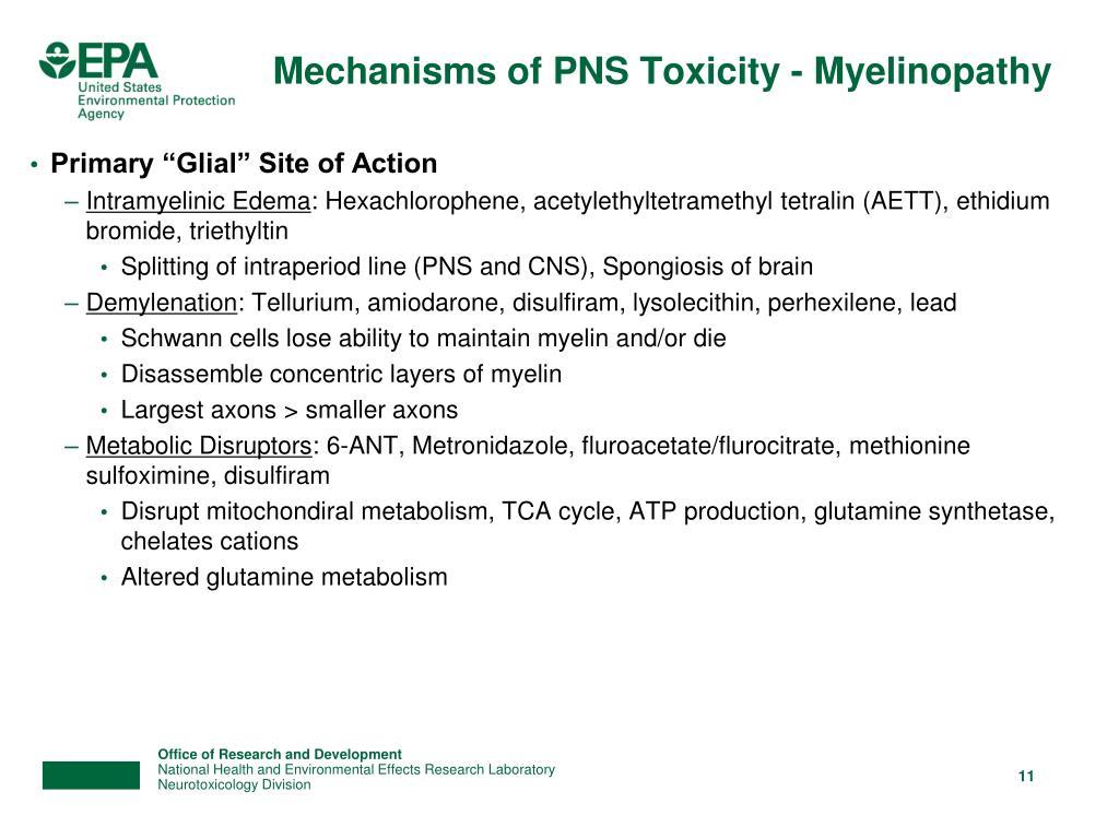 Mechanisms of PNS Toxicity - Myelinopathy