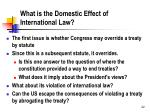 what is the domestic effect of international law
