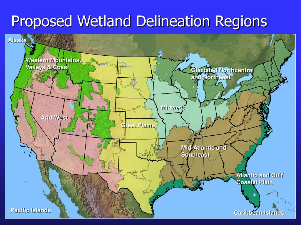 Proposed Wetland Delineation Regions