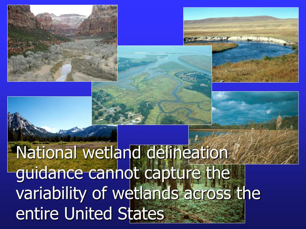National wetland delineation guidance cannot capture the variability of wetlands across the entire United States