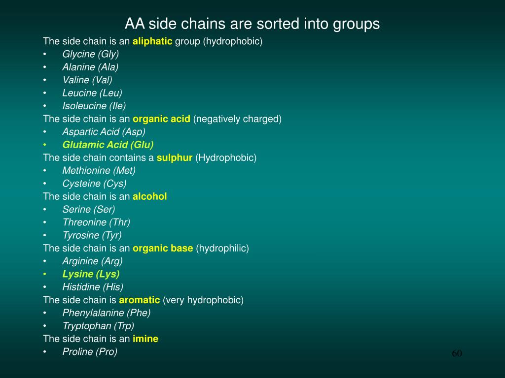 AA side chains are sorted into groups