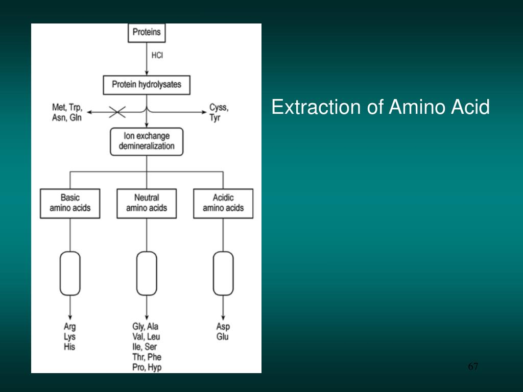 Extraction of Amino Acid