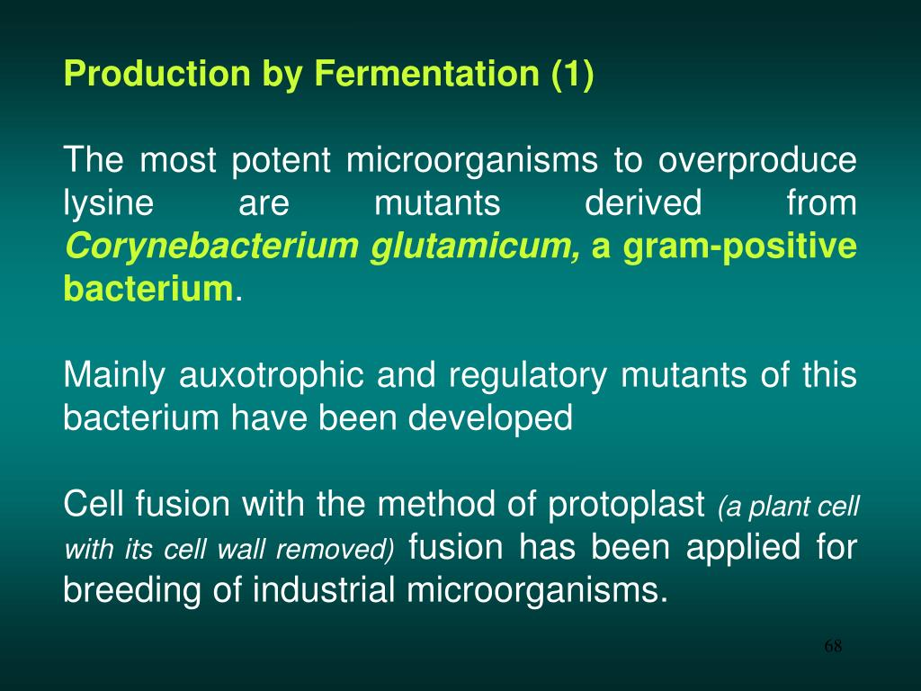 Production by Fermentation (1)