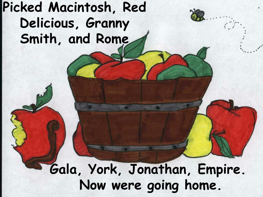 Picked Macintosh, Red Delicious, Granny Smith, and Rome