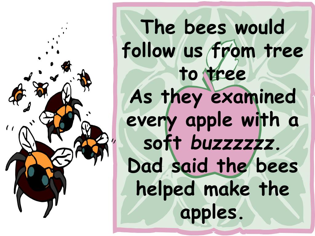 The bees would follow us from tree to tree