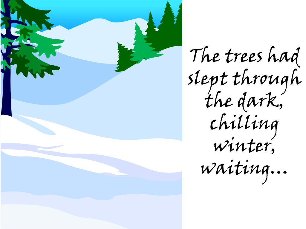 The trees had slept through the dark, chilling winter, waiting…