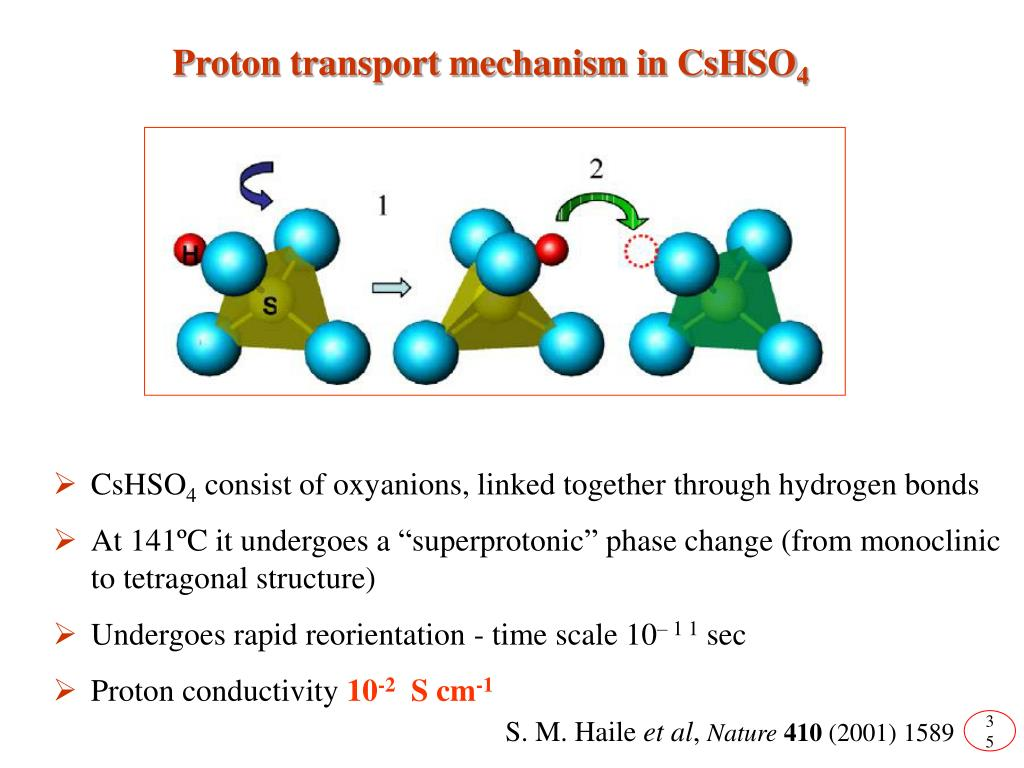 Proton transport mechanism in CsHSO