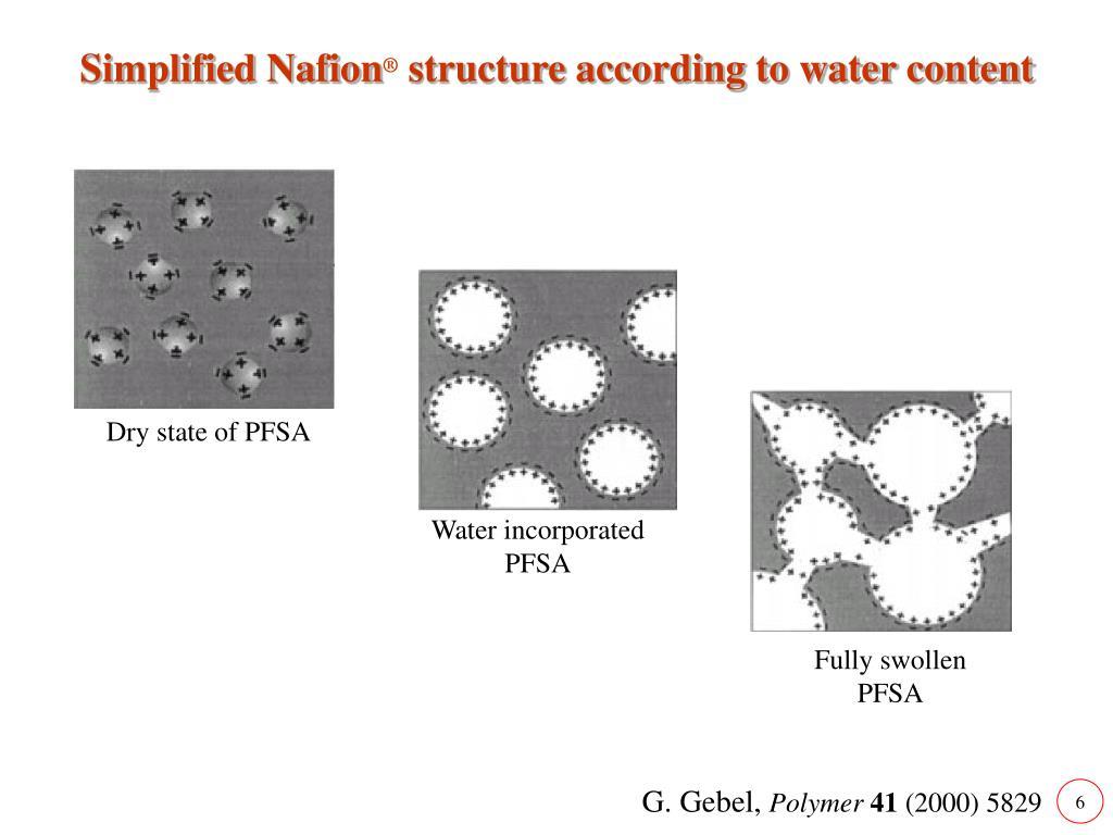Simplified Nafion
