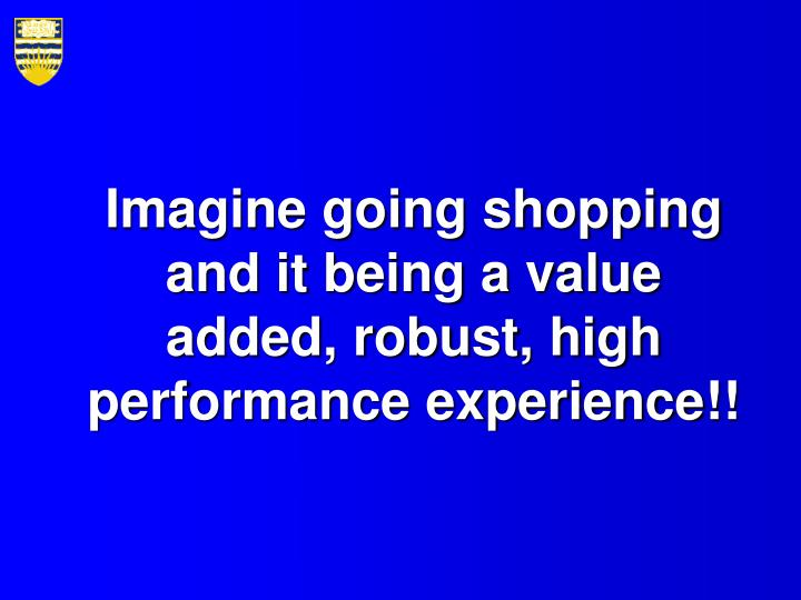 Imagine going shopping and it being a value added robust high performance experience