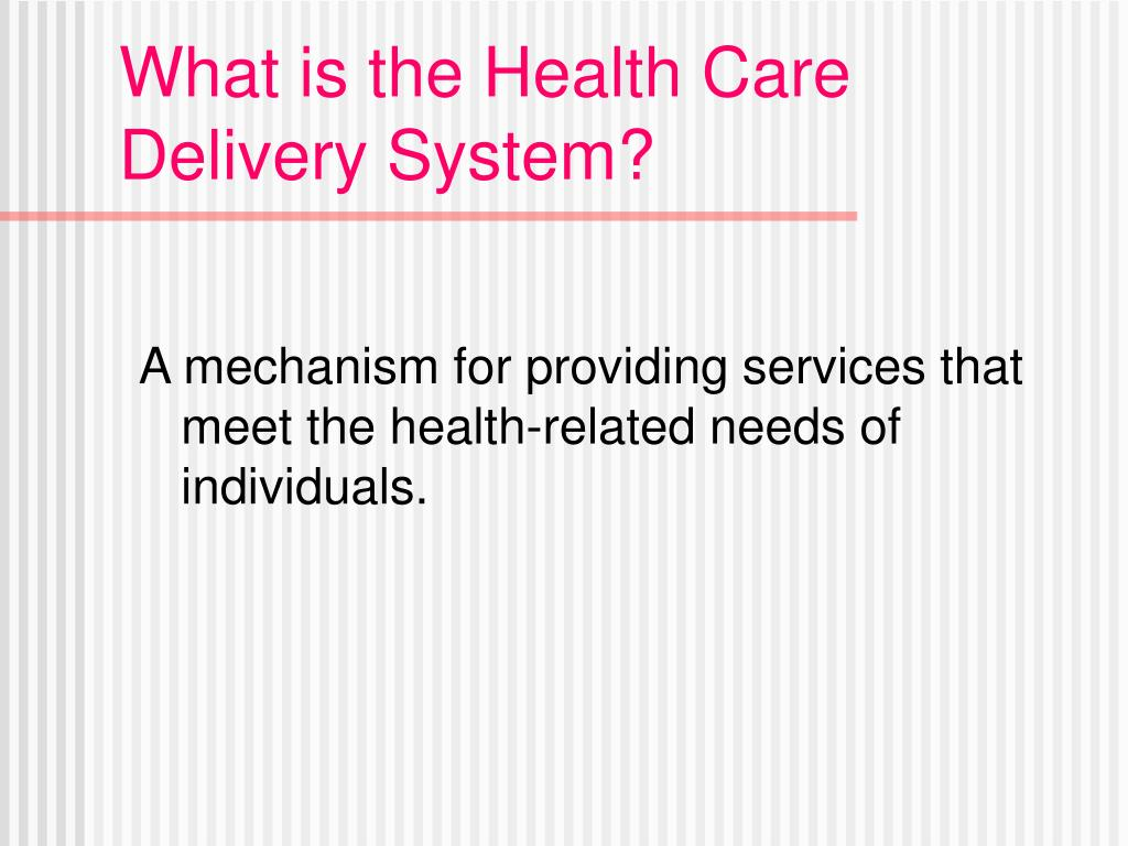 What is the Health Care Delivery System?
