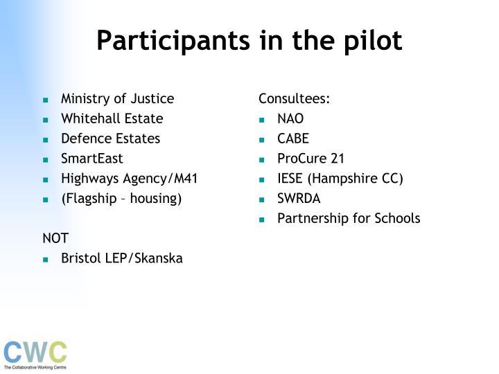 Participants in the pilot