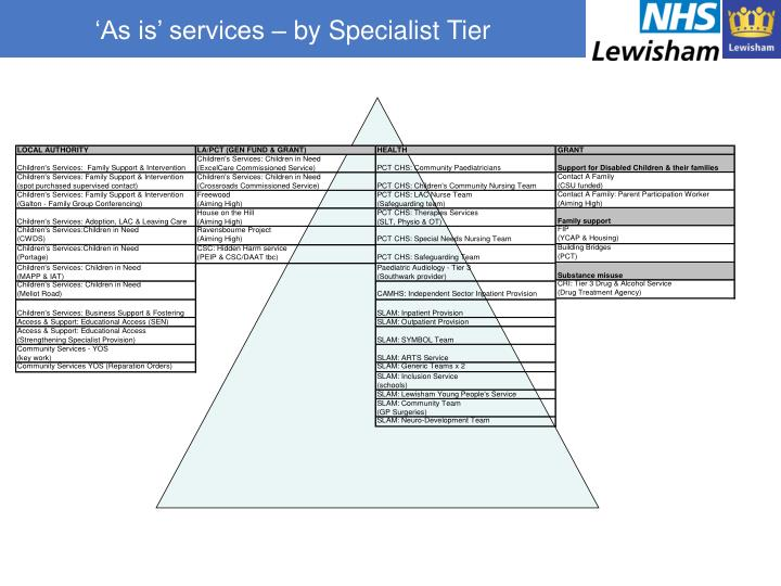 'As is' services – by Specialist Tier