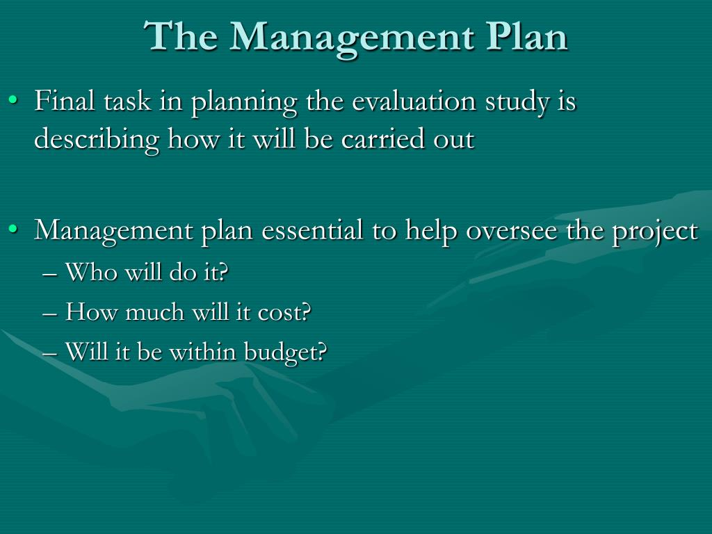 The Management Plan