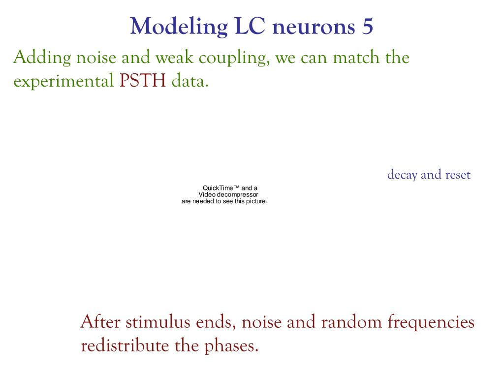 Modeling LC neurons 5