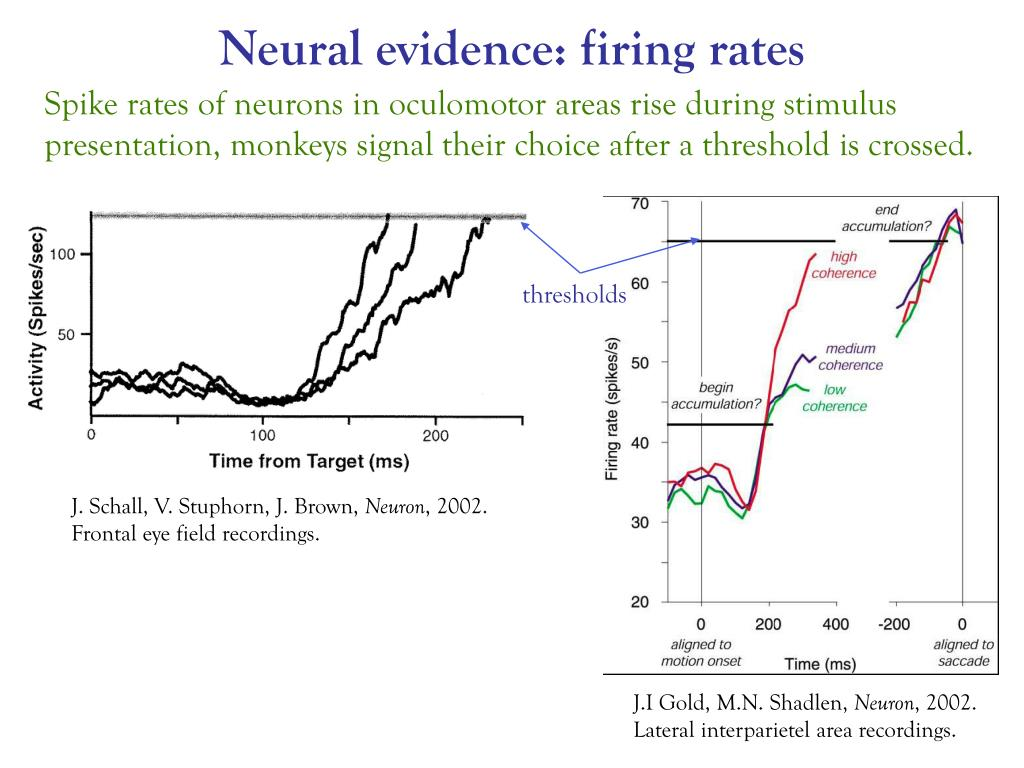 Neural evidence: firing rates