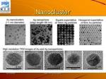 nanocluster
