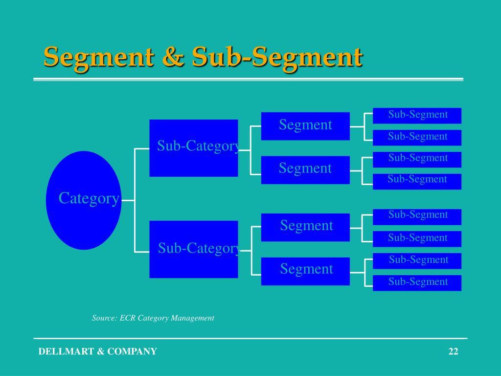 Sub-Segment