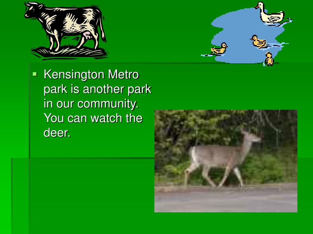 Kensington Metro park is another park in our community. You can watch the deer.