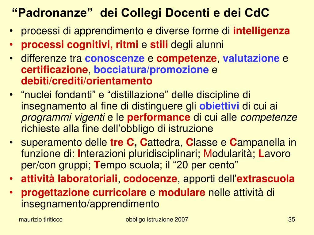 """""""Padronanze""""  dei Collegi Docenti e dei CdC"""