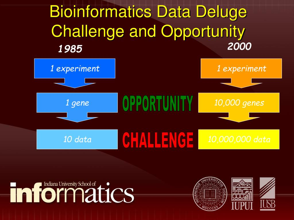 Bioinformatics Data Deluge