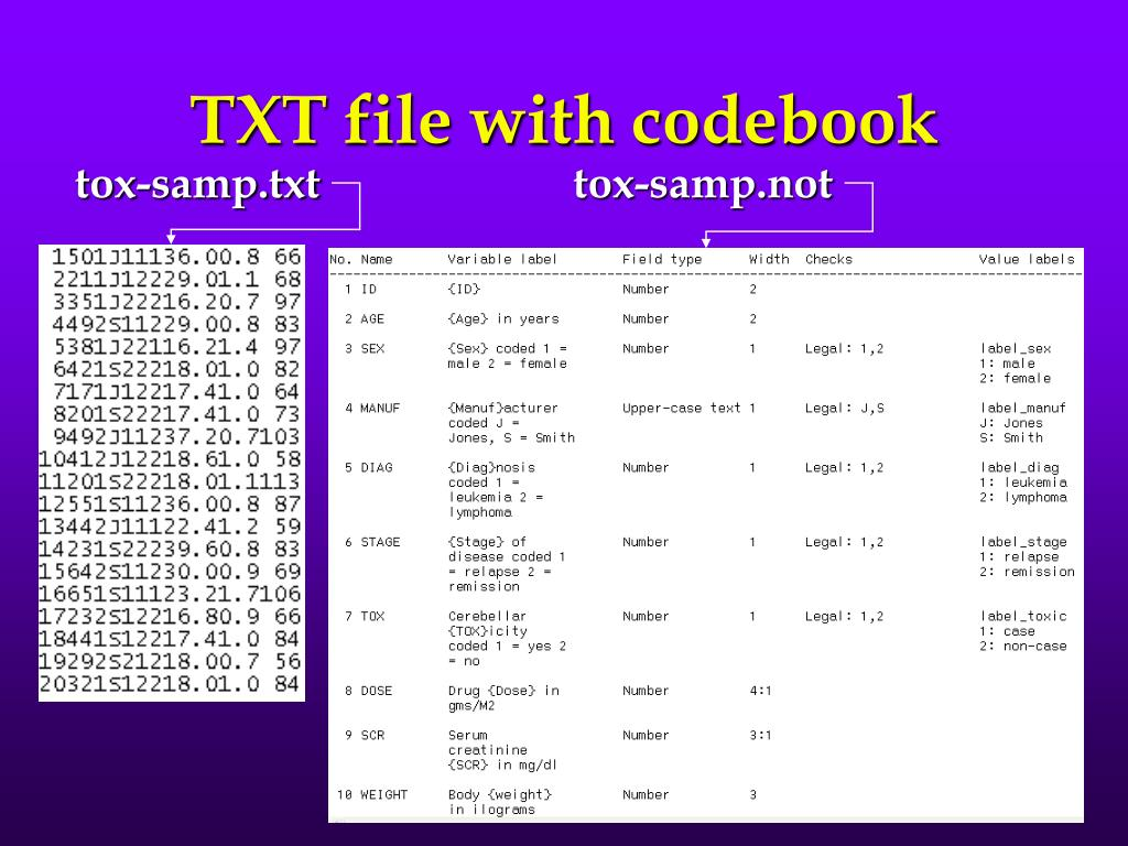 TXT file with codebook