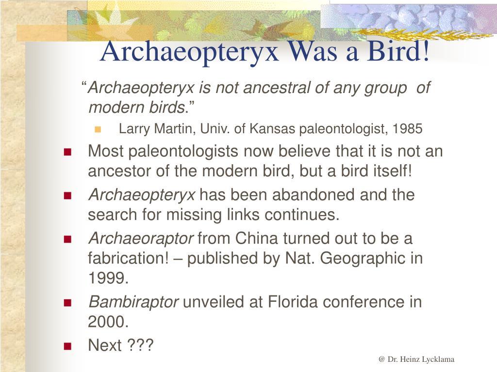 Archaeopteryx Was a Bird!