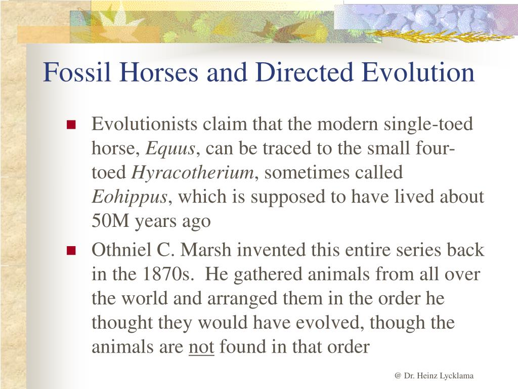 Fossil Horses and Directed Evolution