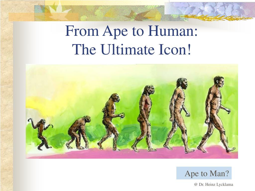From Ape to Human: