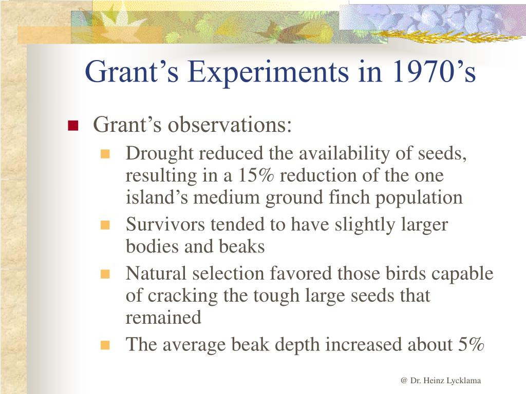 Grant's Experiments in 1970's