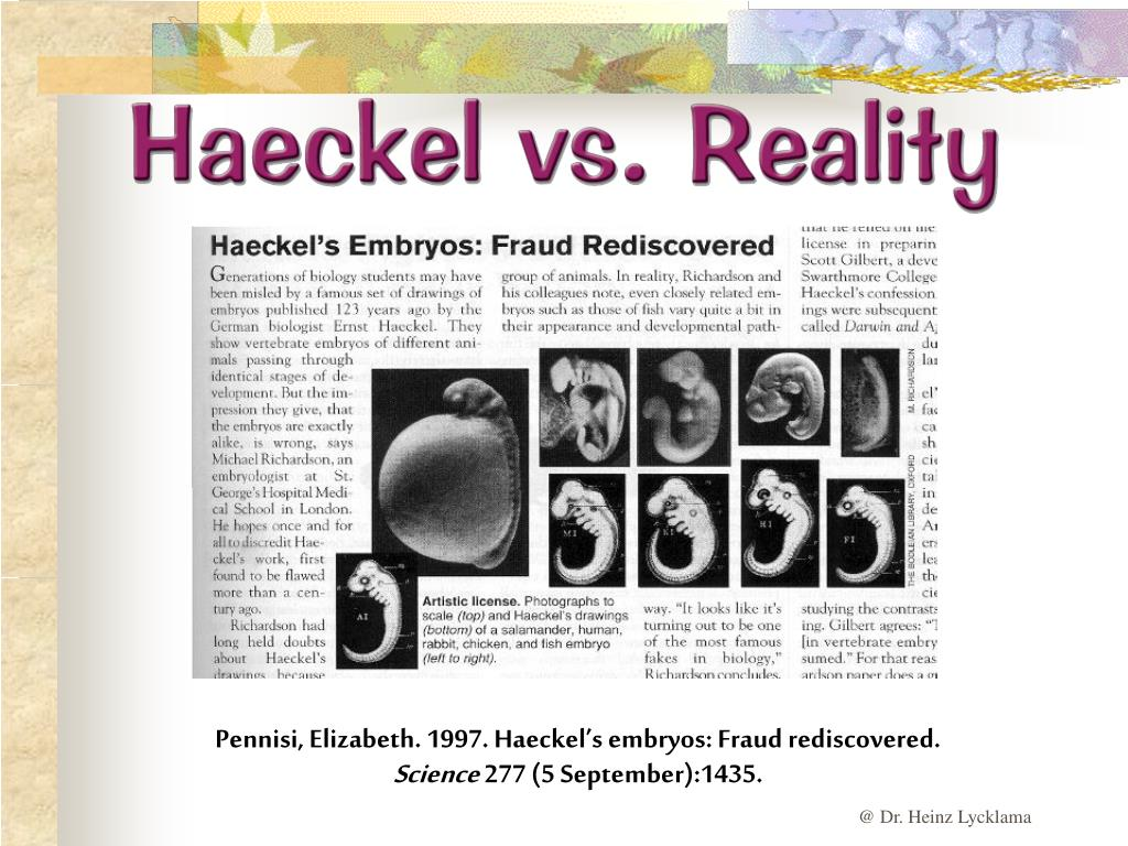 Haeckel vs. Reality
