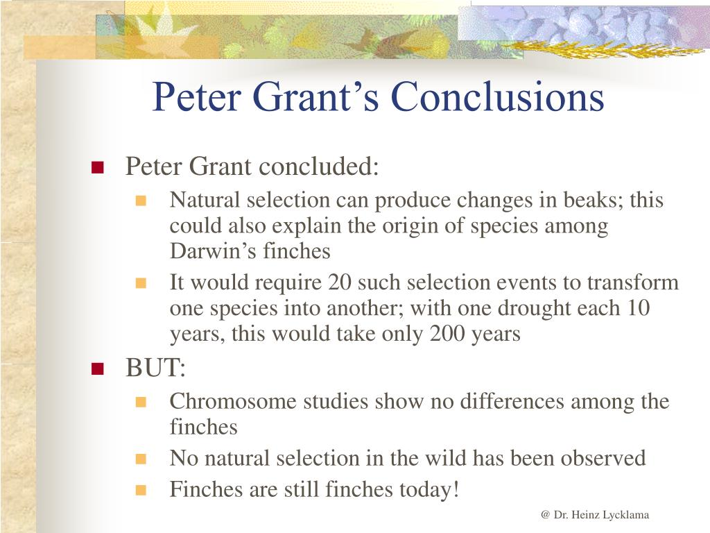 Peter Grant's Conclusions