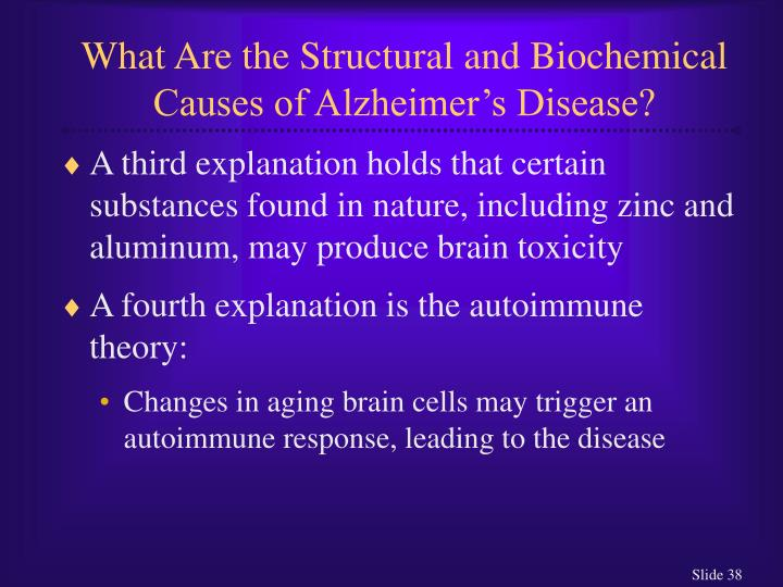 What Are the Structural and Biochemical Causes of Alzheimer's Disease?