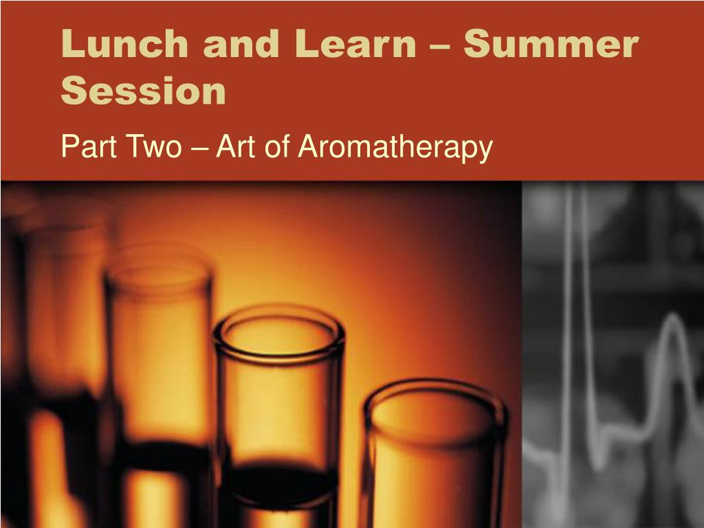 Lunch and Learn – Summer Session