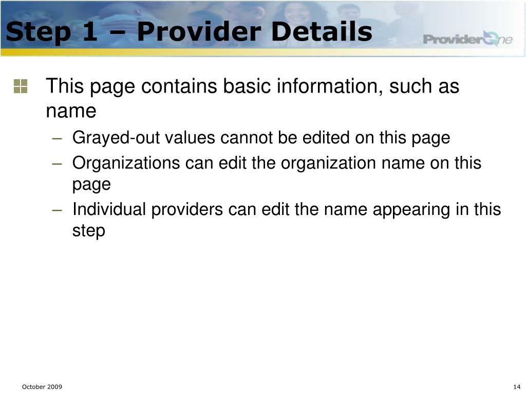 Step 1 – Provider Details