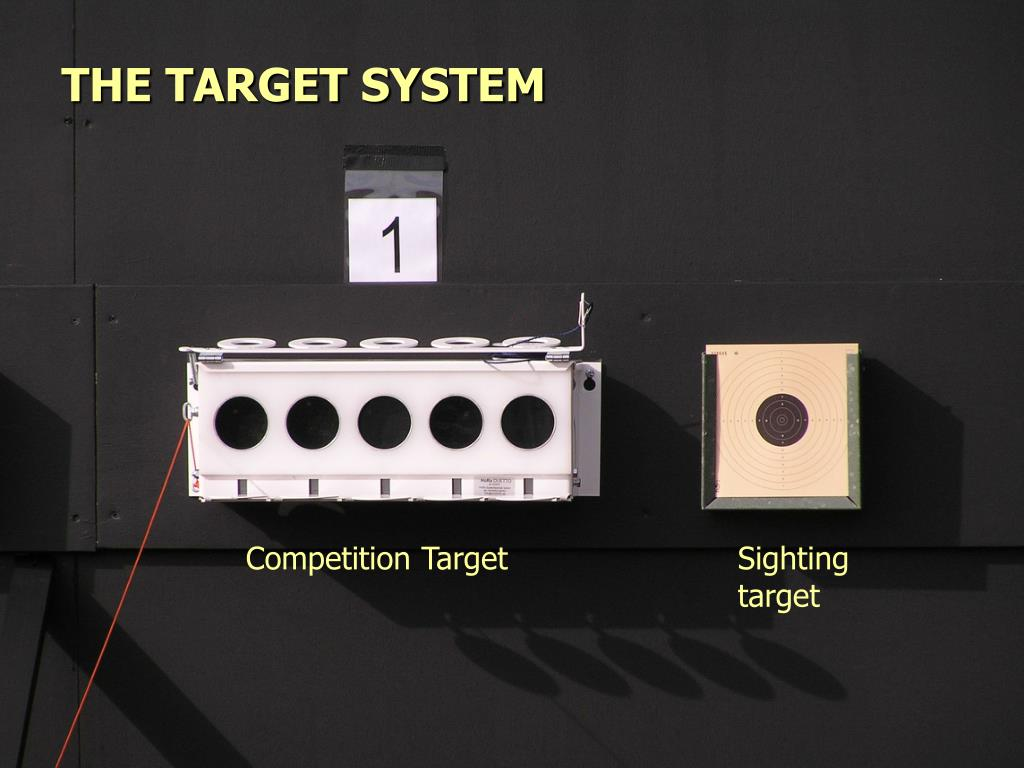 THE TARGET SYSTEM