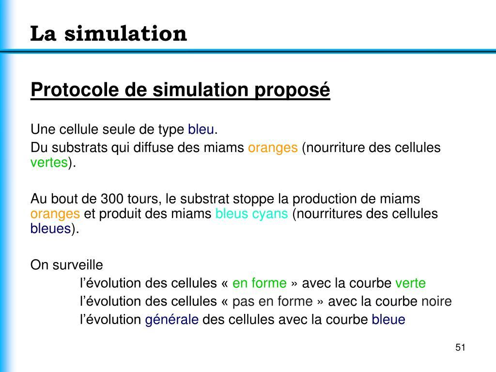 La simulation
