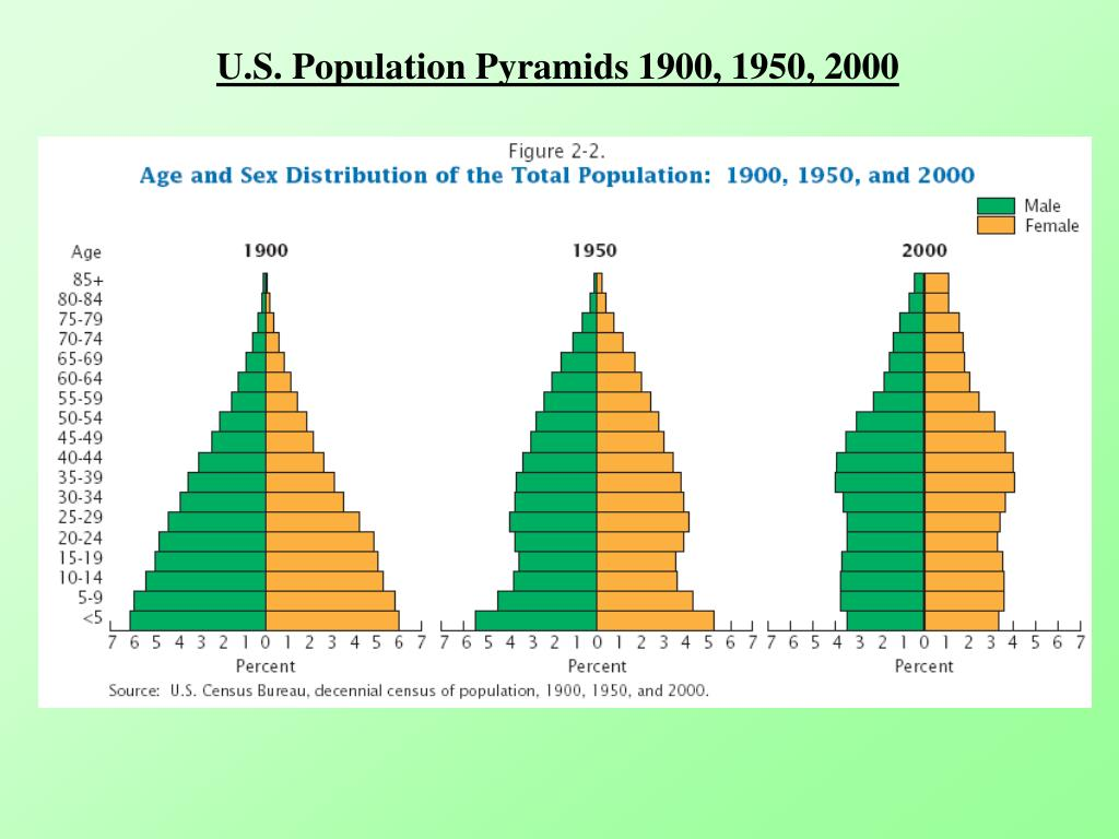 U.S. Population Pyramids 1900, 1950, 2000