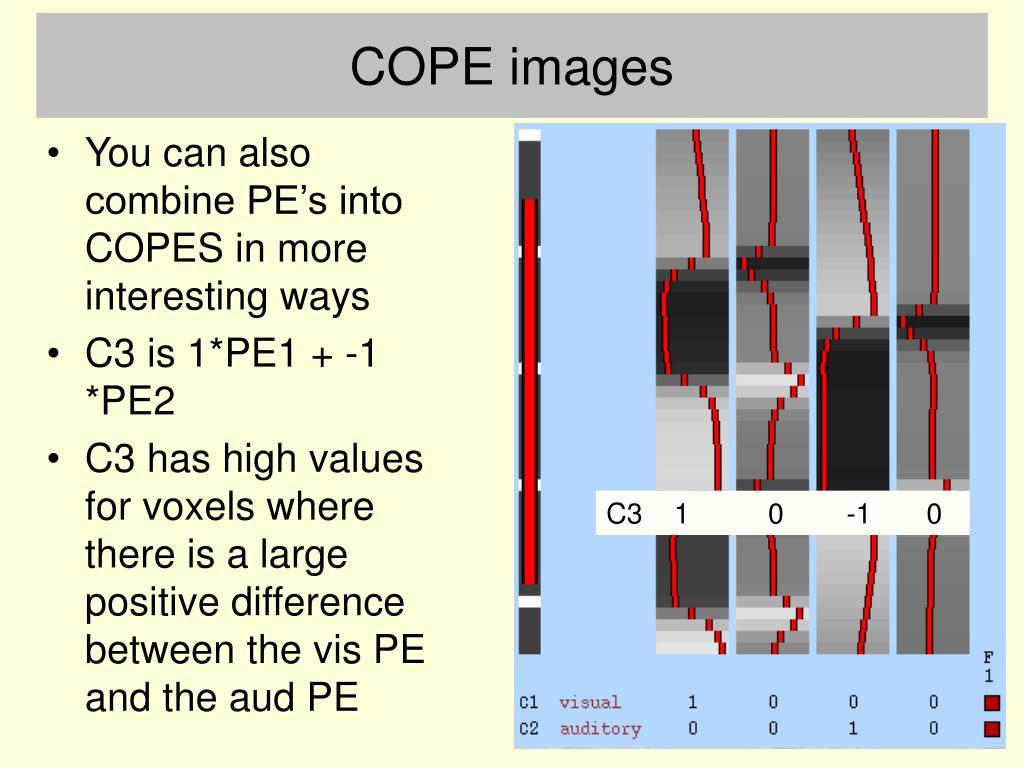 COPE images