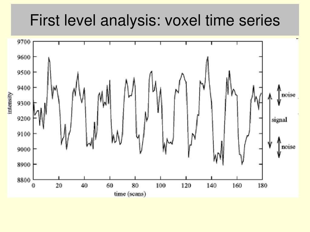 First level analysis: voxel time series
