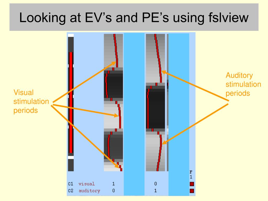 Looking at EV's and PE's using fslview