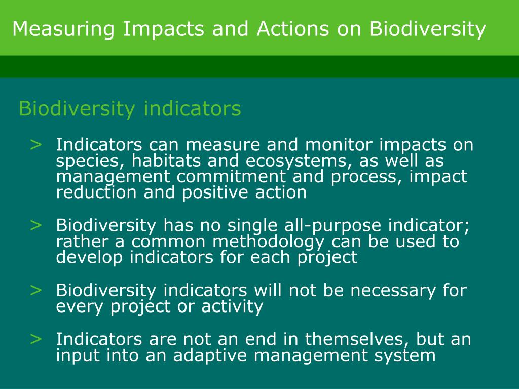 Measuring Impacts and Actions on Biodiversity