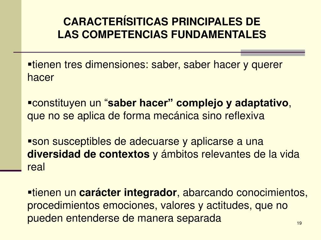 CARACTERÍSITICAS PRINCIPALES DE