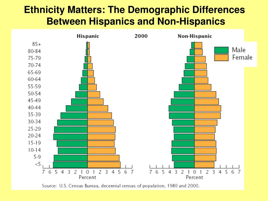 Ethnicity Matters: The Demographic Differences