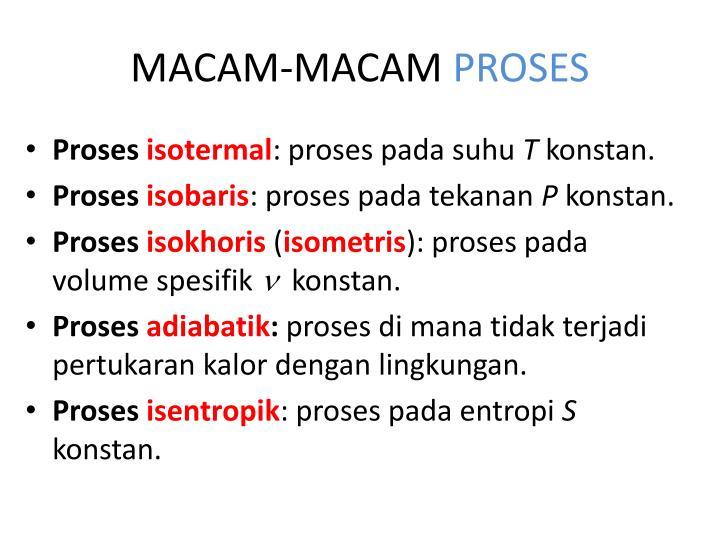 MACAM-MACAM