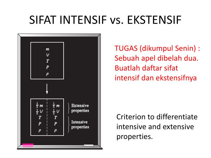 SIFAT INTENSIF vs. EKSTENSIF